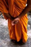 Rana pescatrice alle rovine di Angkor Wat, Cambogia Fotografia Stock Libera da Diritti