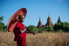 Rana pescatrice buddista fotografia stock