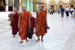 Rana pescatrice buddista al festival di luna piena Immagine Stock Libera da Diritti