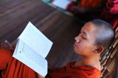 Rana pescatrice buddista che studia pali in un monastero, Myanma Immagine Stock Libera da Diritti