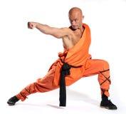 Rana pescatrice del guerriero di Shaolin Immagine Stock Libera da Diritti