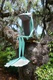 Rana que se sienta en una rama del roble vivo. Foto de archivo