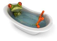 Rana in un bagno