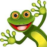 Rana verde allegra royalty illustrazione gratis