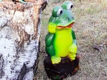 Rana verde hermosa grande al lado del cáñamo del abedul fotos de archivo libres de regalías