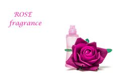 Różana woń Fotografia Stock