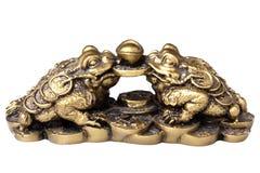 Ranas chinas del shui del feng Imagen de archivo libre de regalías