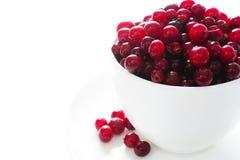 ranberries Στοκ φωτογραφία με δικαίωμα ελεύθερης χρήσης