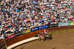 Chilean Rodeo Stock Photo