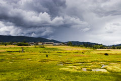 Ranch. Beautiful ranch and beautiful sky Royalty Free Stock Images