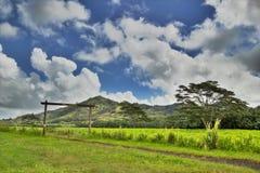 Ranch d'île Photos libres de droits