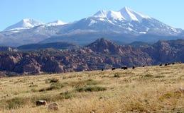 Ranch de désert de Moab image libre de droits