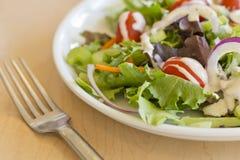 Ranch de salade de jardin photographie stock libre de droits