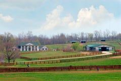 Ranch del cavallo del Kentucky Fotografia Stock Libera da Diritti