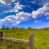 Ranch del prato di California in un giorno di molla del cielo blu Fotografie Stock Libere da Diritti