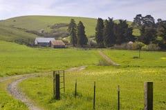 Ranch della contea di Sonoma Fotografia Stock