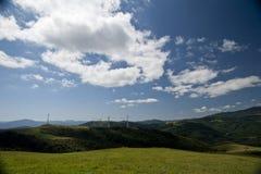 Ranch della Corea Samyang Fotografia Stock Libera da Diritti