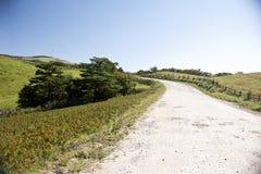 Ranch della Corea Samyang Immagine Stock