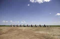 Ranch di Cadillac fotografia stock libera da diritti