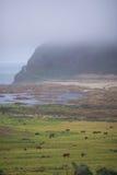 Ranch durch das Meer Lizenzfreies Stockfoto