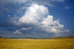 Ranch e nube Immagini Stock