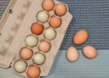 Ranch Eggs on blue Stock Images