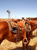 Ranch Horse and Saddle Royalty Free Stock Photos