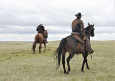 Ranch horses with riders in pasture stock photos