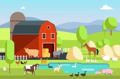 Ranch house, farm building and agricultural animals in rural landscape. Eco farm vector flat background. Ranch house, farm building and agricultural animals in Royalty Free Stock Images