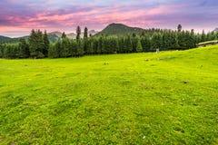 Ranch im Tal stockfoto