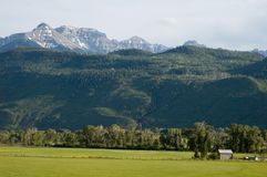 Ranch Near Ridgway, Colorado. In the shadow of the beautiful San Juan Mountains in Ouray County, Colorado, a ranch glows in late afternoon sunlight Royalty Free Stock Photography