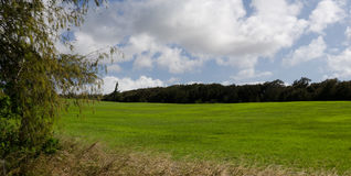 Ranch near windmills farm  at Upolu Point, Big Island Royalty Free Stock Photo