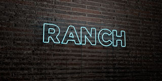 RANCH -Realistic Neon Sign on Brick Wall background - 3D rendered royalty free stock image. Can be used for online banner ads and direct mailers Stock Photos