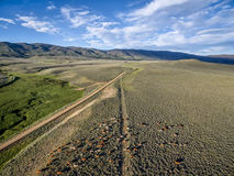 Ranch road and cattle Royalty Free Stock Image