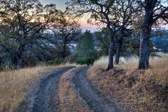 Ranch Road Sunrise Stock Photo