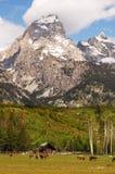 Ranch sotto la montagna Fotografia Stock Libera da Diritti