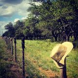 Ranch Stock Image
