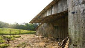 Ranch und Feld stockfoto