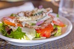 Ranch végétal de salade image stock