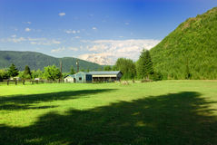 Ranch in the valley. This ranch is placed in the valley with view at    Rainier Mountain Royalty Free Stock Images