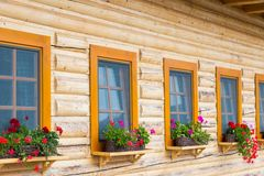 Ranch windows with flowers. Colourful flowers in flowerpots on a wooden windowsill of a cottage Royalty Free Stock Photography