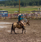A rancher competing at a rodeo in colorado Royalty Free Stock Images