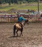 A rancher competing at a rodeo in colorado Royalty Free Stock Photos