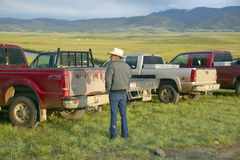 Rancher and cowboy looking at pickup trucks in Centennial Valley, near Lakeview, MT Royalty Free Stock Photo