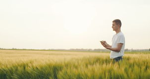 Rancher Using Digital Tablet In Agricultural Field stock video footage