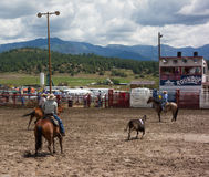 Ranchers competing at a rodeo in colorado Stock Photos