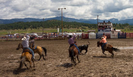 Ranchers competing at a rodeo in colorado Royalty Free Stock Photography
