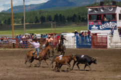 Ranchers competing at a rodeo in colorado Royalty Free Stock Photo