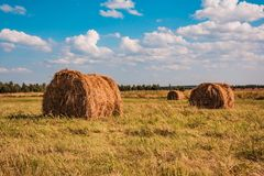 Ranches of hay in a meadow Royalty Free Stock Photos