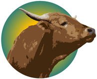 ranching логоса Стоковая Фотография RF